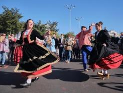 西班牙马德里:移牧节